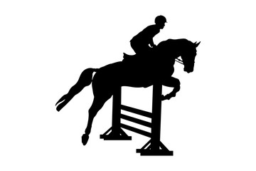 equestrian sport male rider horse show jumping competition