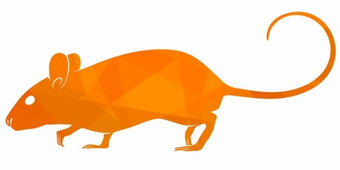 mouse illustration, vector draw