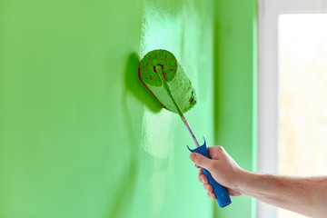 Male hand painting wall with paint roller. Painting apartment, renovating with green color paint