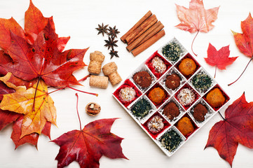 Extra vegan (raw food) sweets from dried fruits, nuts, seeds, spices and seasonings in a white box on a white background. Near autumn leaves.