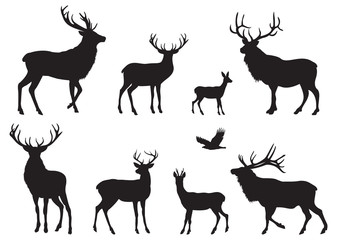 Fototapeta Silhouettes of different Deers and Elks