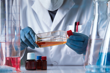 hands of lab technician holding tissue culture flask in the genetic laboratory / hands of scientist working with a flask of human cell culture in the lab