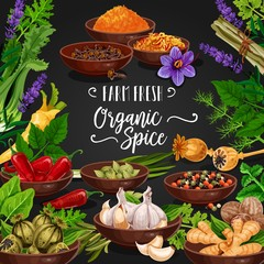 Herbs and spices poster for fresh seasonings shop