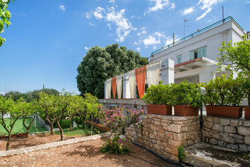 Beautiful holiday house or villa with orange tree garden in backyard and wide terrace with green herbs all around. Sunny summer vacation with family.