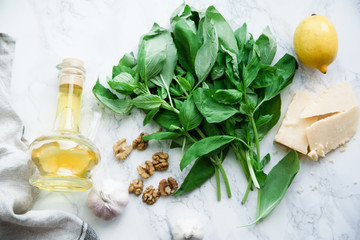 Basil pesto ingredients on marble background. Top view composition, recipe flatlay