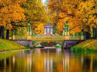 In de dag Oranje eclat Saint Petersburg. Autumn. Russia. Pushkin City. Autumn Park. Tsarskoe Selo in the fall. Suburbs of Petersburg. Russia in the fall.