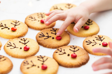 Child decorates homemade cookies with candy and chocolate icing.  Christmas deer cookies.