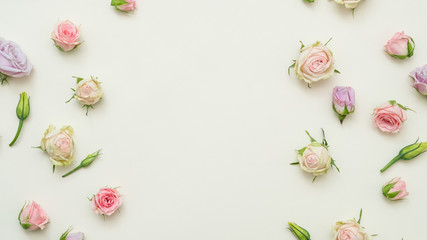 rose buds mix on white background. tender floral layout