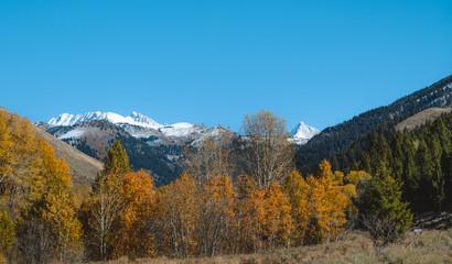 Sun Valley Idaho Fall Colors 7