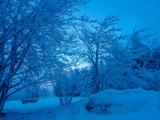Snow covered park bench in winter wonderland during blue hour.