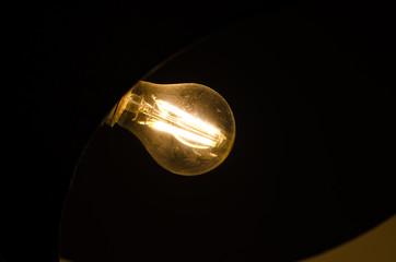 bulbi luce