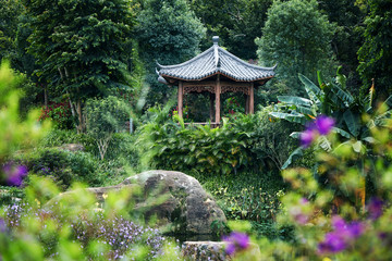 Asian-style pavilion, in the garden of the plant environment