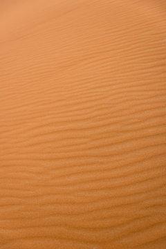 Waves of the desert