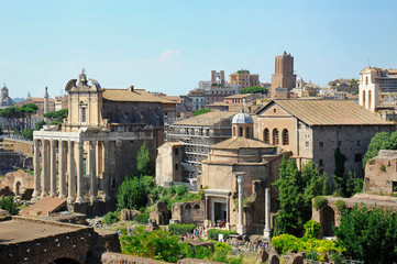 Roman Forum or Forum Romanum ruins viewing from the Palantine Hill towards Temple of Antoninus and Faustina on the left, and Temple of Romulus on the right , Rome, Italy