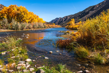 Beautiful autumn colors on  Rio Grande river flowing through New Mexico Wall mural