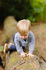 Little Boy Crawling on Log
