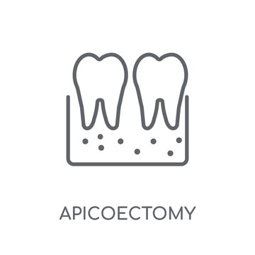 Apicoectomy linear icon. Modern outline Apicoectomy logo concept on white background from Dentist collection