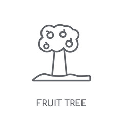 Fruit tree linear icon. Modern outline Fruit tree logo concept on white background from Ecology collection