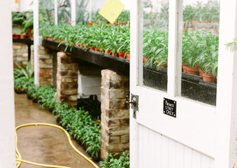 Looking into a glasshouse> There is a sign on the door saying that the space is private.