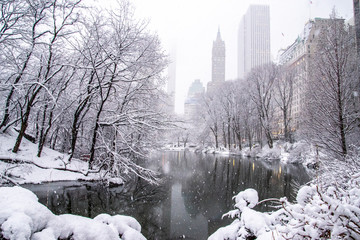 A snowy day in New York