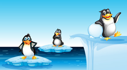Penguin in arctic landscape