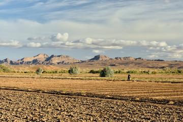 Iran, Mesr oasis on the Dasht-e Kavir desert near Khur city, Iran