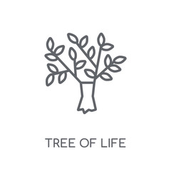 Tree of Life linear icon. Modern outline Tree of Life logo concept on white background from Religion-2 collection