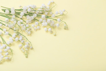 lilies of the valley on  paper background