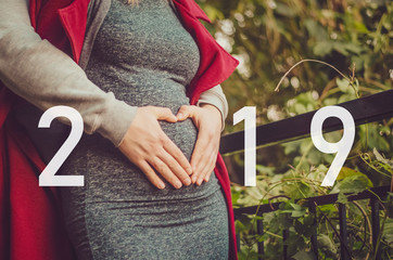 inscription 2019 on the background of a couple of husband and wife, a woman is pregnant while a husband hugs her for the belly
