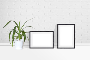 Two black photo frames and Yucca plant in flower pot near white bricks wall. Interior decor mock up