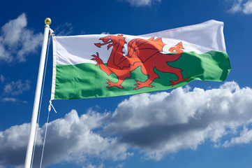 WELSH RED WHITE AND GREEN NATIONAL FLAG WITH BLUE SKY AND WHITE CLOUDS