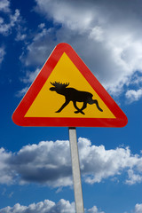TRIANGLULAR RED AND TELLOW ROAD TRAFFIC SIGN WITH PICTURE OF MOOSE AND BLUE SUMMER SKY