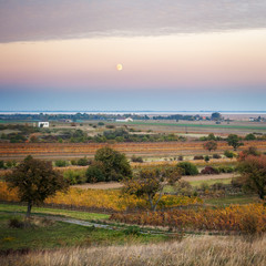 Rising moon above landscape at lake neudiedl in Burgenland