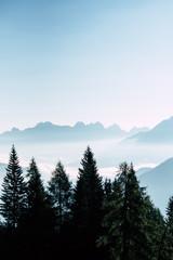 Aluminium Prints mountains in the fog
