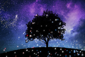 a magic night lanscape with tree and starry sky