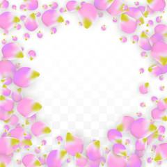 Vector Realistic Pink Petals Falling on Transparent Background.  Spring Romantic Flowers Illustration. Flying Petals. Sakura Spa Design. Blossom Confetti.