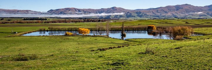 Panorama farm scene, Central Otago
