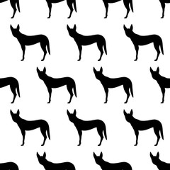 Seamless pattern with silhouettes of Dingo dog.