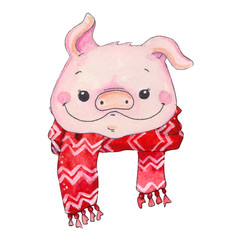 watercolor cartoon Piggy face illustration.
