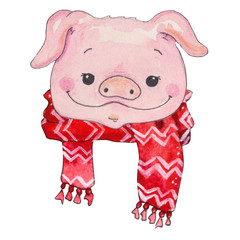 watercolor cartoon Piggy face illustration.