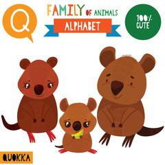 Letter Q-Mega big set.Cute vector alphabet with family of animals in cartoon style.