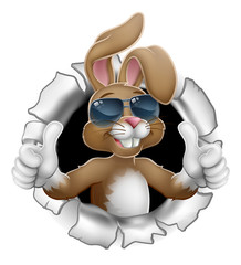 Easter bunny rabbit cartoon character in cool sunglasses or shades breaking through the background and giving a thumbs up