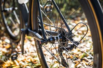 Rennradfahren im Herbst