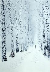 winter walk in the birch park