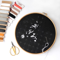Beginning of embroidery on black canvas with woolen threads. Cross-stitch painting with Maine Coon Cat.