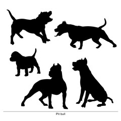 Pit Bull breed dog. Vector silhouette of the dog