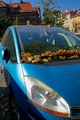 dusty and covered with autumn leaves car