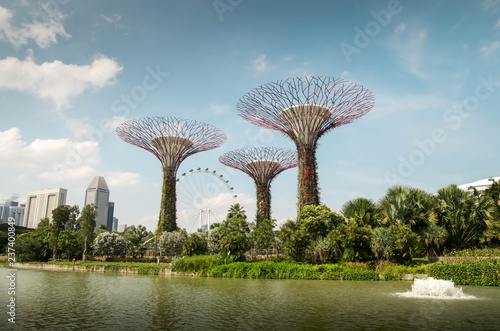 Wall mural Gardens By the Bay Singapour