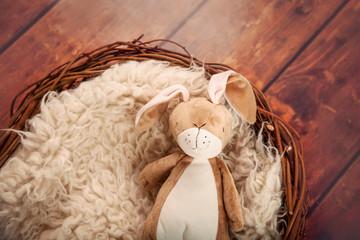 Nest with sheepskin and rabbit teddy