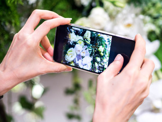 Take photo beautiful flower by smartphone